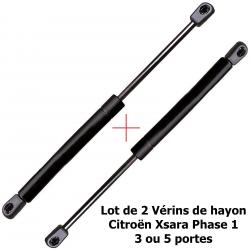 Lot de 2 Vérins de coffre hayon pour Citroën Xsara Break de 1997 à 2004